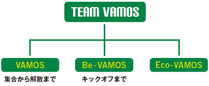 TEAM VAMOSの種別